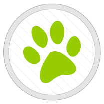 Home Page Icons-07